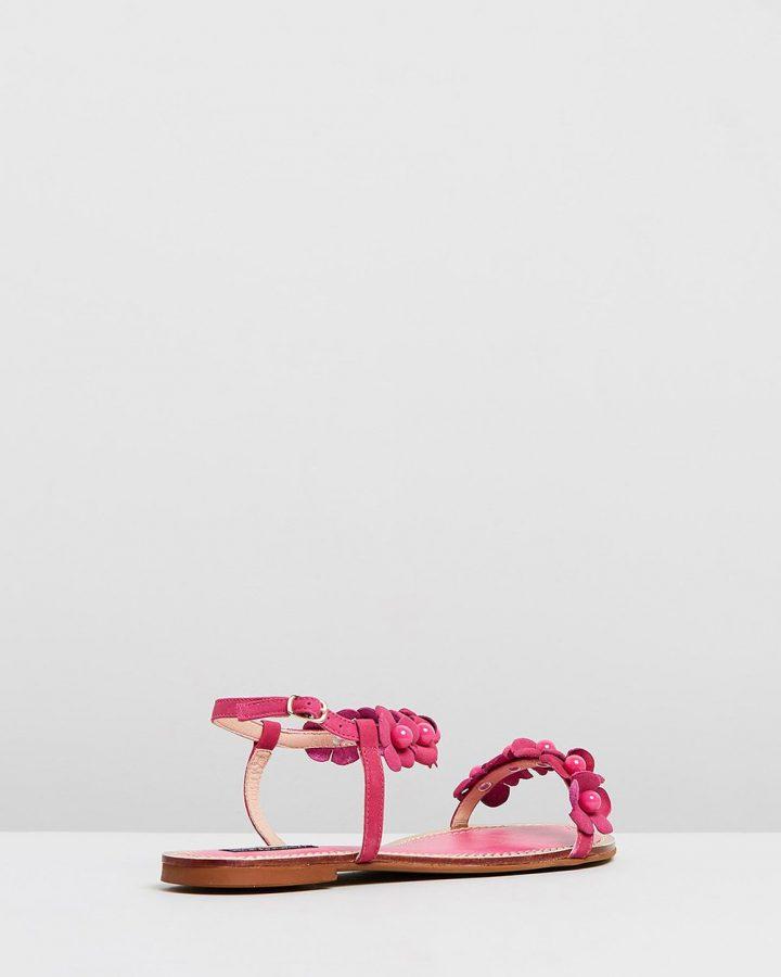 Iris - Pink